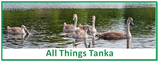 All Things Tanka