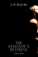 Book cover image of The Assassin's Mistress