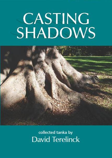 Casting Shadows by David Terelinck