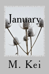 January, A Tanka Diary