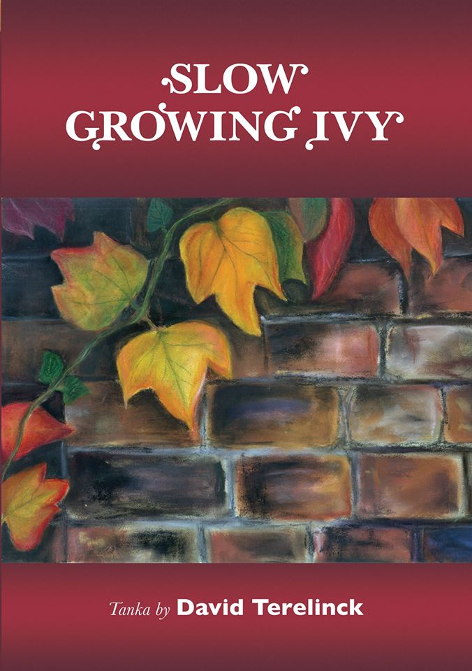 Slow Growing Ivy by David Terelinck